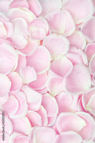 Background Texture Of Soft Pink Rose Petals Symbolic Of Love And