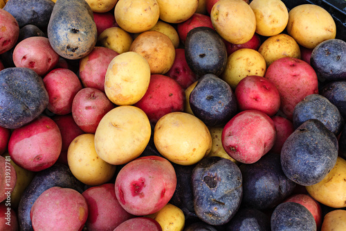 Colorful organic potatoes at a local farmers market