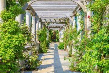 FototapetaHampstead Pergola and Hill Garden in London, England