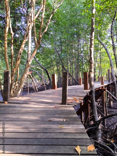 most do lasu namorzynowego