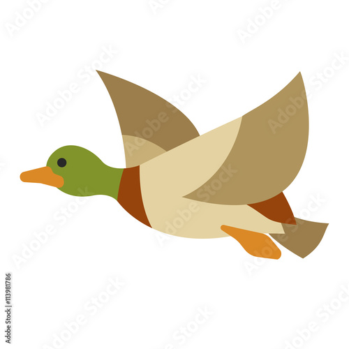 Flying vector duck on isolated background #113981786