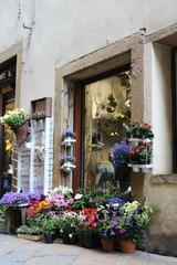 Fototapeta na wymiar negozio di fiori a Volterra
