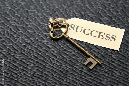 成功の鍵 Canvas Print