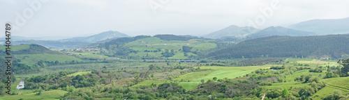 Deurstickers Olijf Paisaje asturiano, Asturias, España