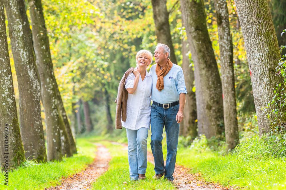 Fototapeta Älteres Paar macht Spaziergang im Wald