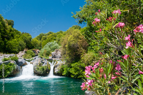 Oleander plant, a natural pool and a fall of the Alcantara river park, Sicily Wallpaper Mural