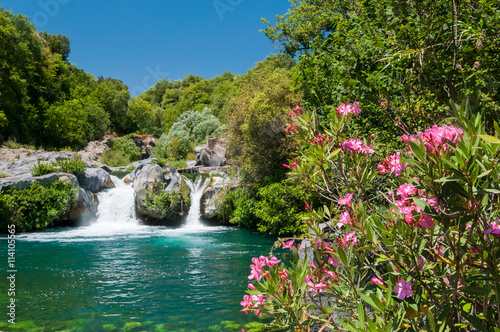 Oleander plant, a natural pool and a fall of the Alcantara river park, Sicily Canvas Print