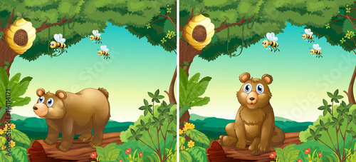 Canvas Prints Bears Scenes with bears and bees