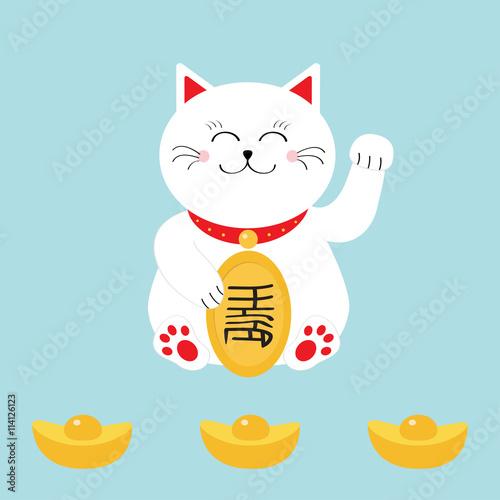 Photo  Lucky cat holding golden coin