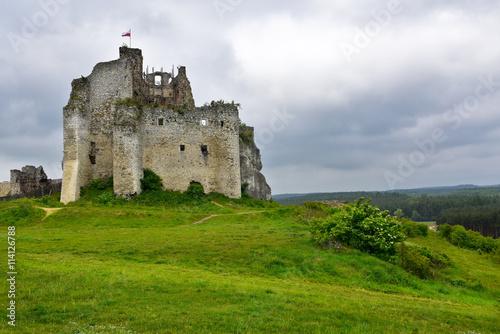 Fotobehang Rudnes Landscape of Mirów Castle ruins in Poland