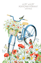 Blue Bicycle In The Meadow. Hand Drawn Watercolor Image Isolated On White. 4.25''x 6.25'' Postcard Format With Bleed