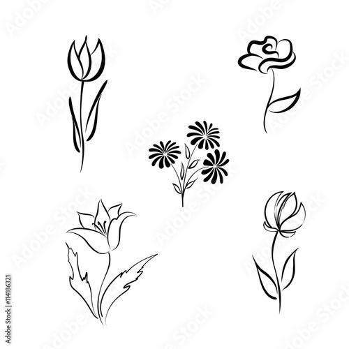 Flower set. Engraved hand drawing floral background design