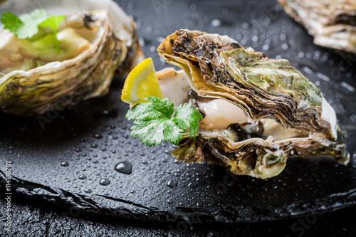 Fototapety, obrazy: Freshly caught oyster in shell on black rock