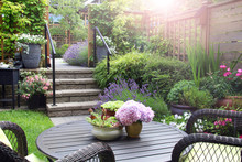 Small Townhouse Perennial Garden. Also Available In Vertical.