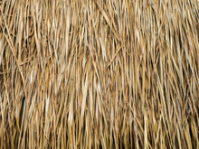 Closeup Of Thatch Roof