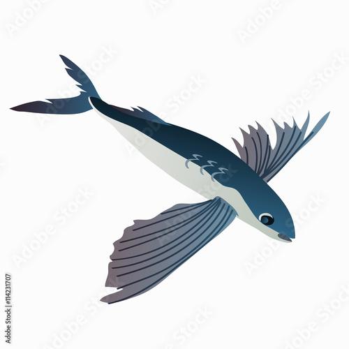 Obraz na płótnie Flying fish in cartoon style on white background