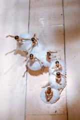 Fototapeta The seven ballerinas on floor