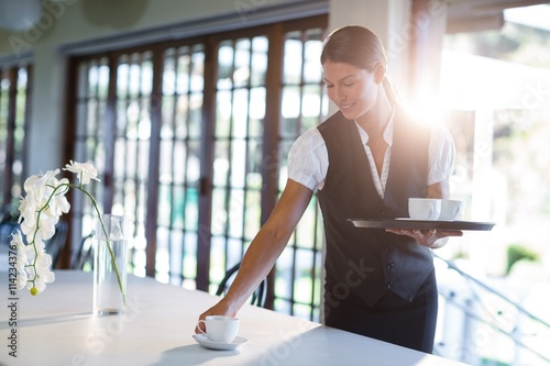 Fototapeta Smiling waitress serving cup of coffee obraz
