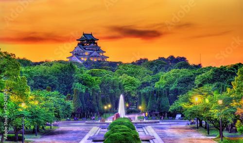 Naklejka premium Widok na park zamkowy w Osace w Japonii