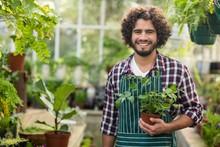 Smiling Male Gardener Holding ...