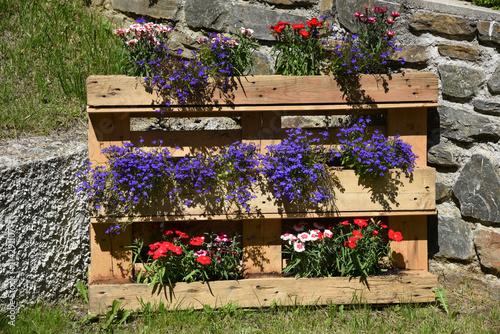 Giardino fioriere giardini fiori aiuola piante colorate fiori