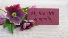 My Heartfelts Sympathy / Engli...