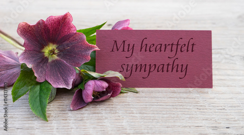 Photo my heartfelts sympathy / English Mourning card with purple hellebores