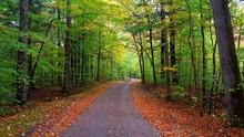 Driving Through Fall Foliage I...