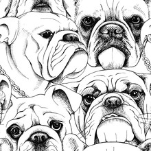 Seamless Pattern With The Image Of A Bulldog Portraits. Vector Black And White Illustration.