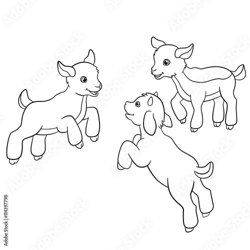 Photo sur Toile Le vous même Coloring pages. Farm animals. Little cute doatlings.