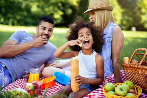 Fotografie, Obraz Family enjoying picnic outing