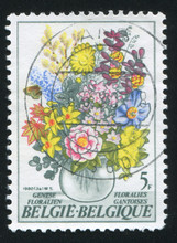 RUSSIA KALININGRAD, 20 OCTOBER 2015: Stamp Printed By Belgium, Shows Bouquet, Circa 1980