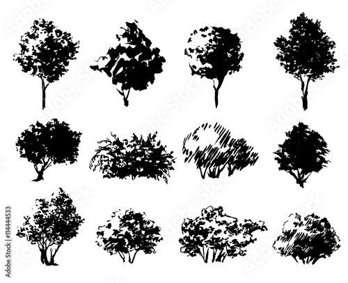 Fotografie, Tablou Set of hand drawn trees and bushes isolated on white