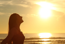 Profile Of Woman Breathing Fresh Air At Sunset