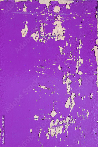 Garden Poster Pink Purple dry peeling crackling chipped paint textured wall