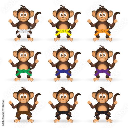 cute chimpanzee set with karate training color belts little monkey  eps10 Wallpaper Mural