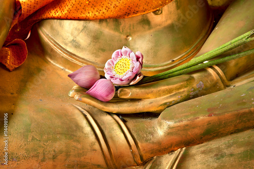 Poster Boeddha Lotus in hand image of buddha