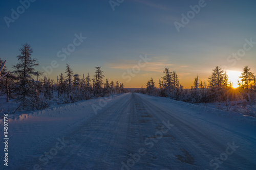 Foto op Aluminium Blauw Winter landscape with forest, trees, cloudy sky and sun