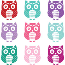 Colorful Cute Owl Silhouette C...