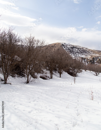 Fotobehang Nature in the Tien Shan mountains in winter. Kazakhstan