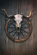 Bloody Bull Skull