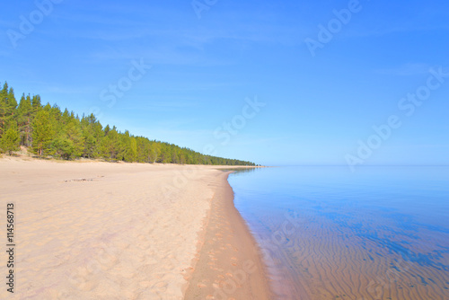 Fotografering  Beach on Ladoga lake at morning.