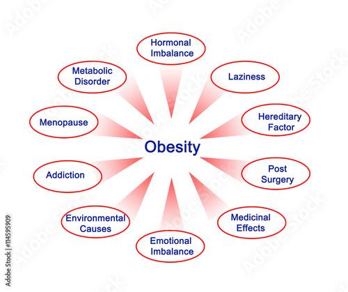 Fotografia, Obraz  Obesity