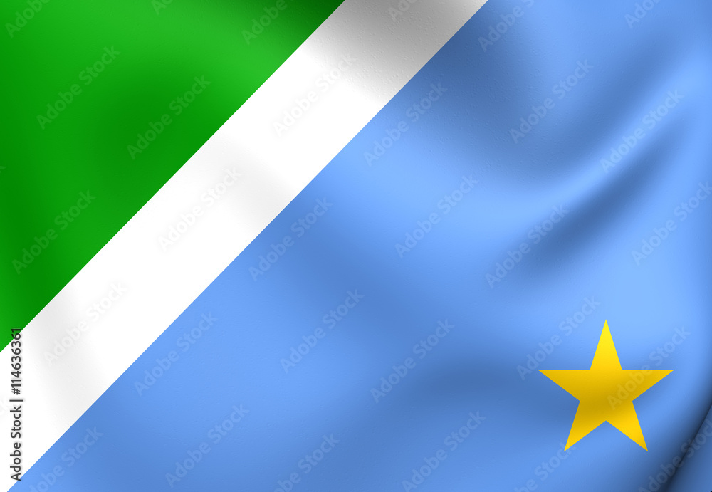 Photo  Flag of Mato Grosso do Sul, Brazil.