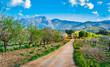 canvas print picture - Beautiful Landscape of Majorca Spain Balearic Islands