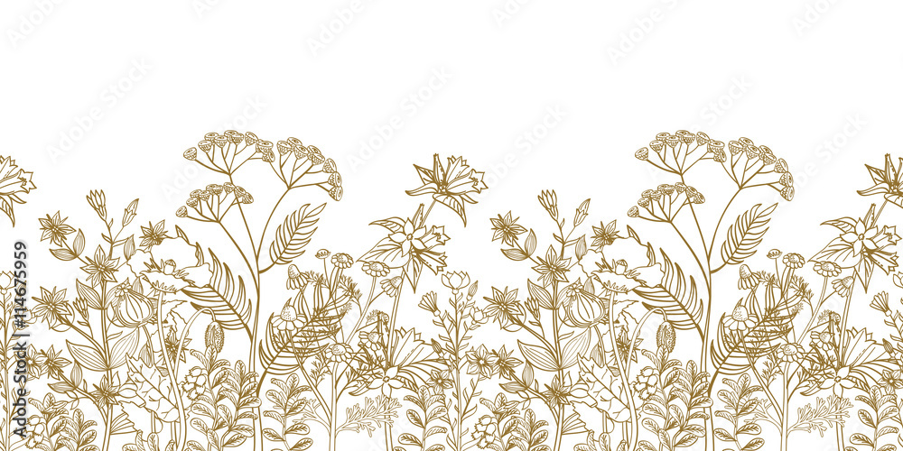 Fototapety, obrazy: Seamless vector floral border with black white hand drawn herbs and wild flowers. Pattern endless with blossom flowers. Floral seamless border with flowers illustration