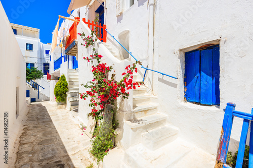 Fototapety, obrazy: A view of whitewashed street with blue windows and flowers in beautiful Mykonos town, Cyclades islands, Greece