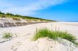 Green grass on sand dune on beautiful beach in Bialogora coastal village, Baltic Sea, Poland