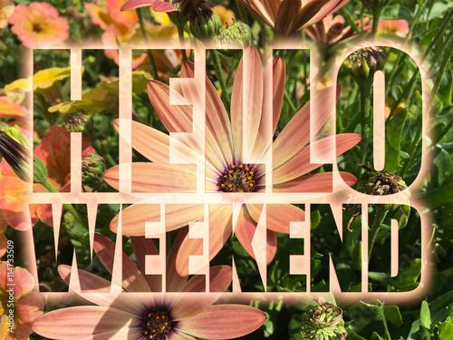 Fotografía  Hello Weekend word on flowers background