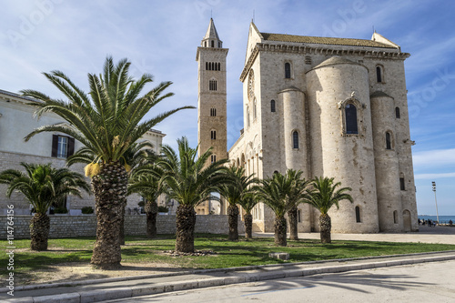 Trani Cathedral with palms Wallpaper Mural